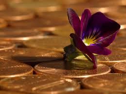 Amulet za novac