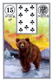 Lenormand karta Medved
