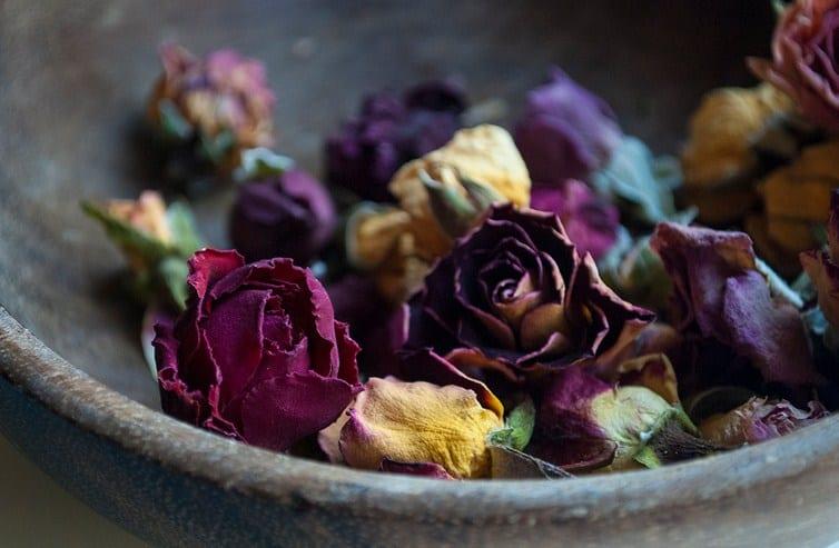 Čarolija sa ružinim laticama