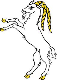 Pet elemenata kineskog horoskopa – znak Koza
