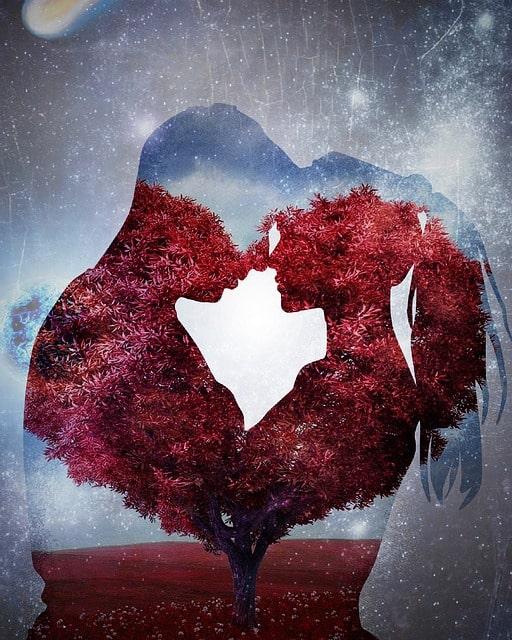 Feng shui i dan zaljubljenih (Valentinovo)