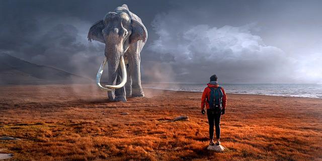 Značenje životinja u snovima