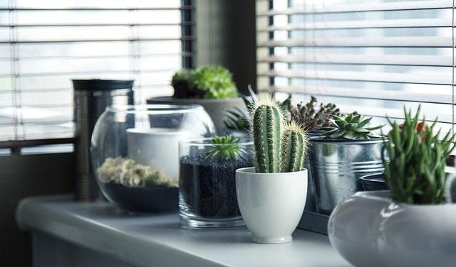 Kako očistiti dom od negativne energije