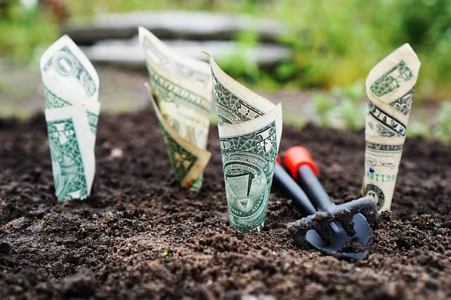 Novac – rituali i verovanja
