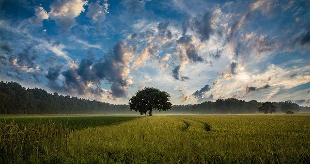 Značenje boje oblaka u snu
