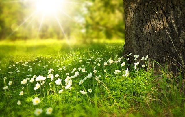 Prolećna ravnodnevica – verovanja i rituali