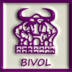 Pet elemenata kineskog horoskopa – znak Bivo