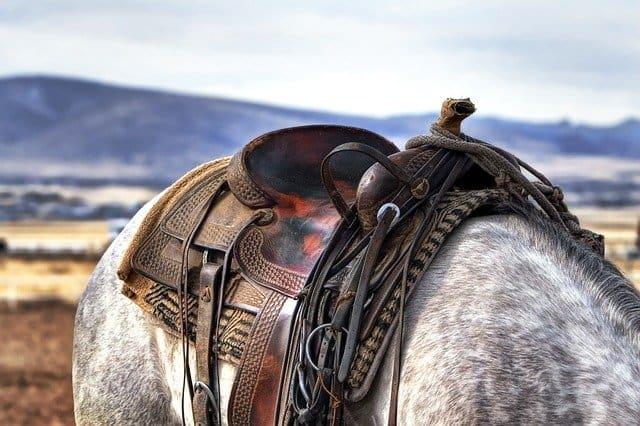 Gatanje iz taloga kafe – simbol konjanik