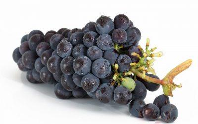 Gatanje iz taloga kafe – simbol grožđa